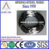60si2mn/65mn /60sicr7 Oil Tempered Spring Wire
