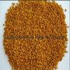 Biokost, Bienen-Blütenstaub100% natürlicher wilder Motherwort-Blütenstaub