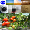 아미노산 비료 수용성 비료 Omri 유기 비료