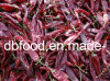 High Quality American Red Chili