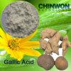 16. Acide gallique 99% d'antioxydants