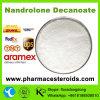 専門のボディービルの粉のNandrolone Decanoate (Deca) /360-70-3