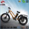 승객석을%s 가진 알루미늄 합금 3 바퀴 E 자전거 Trike 뚱뚱한 타이어 전기 세발자전거