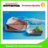 Assiette en céramique de traitement au four de micro-onde en céramique rectangulaire de plaque