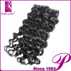Aaaaa Quality 100%년 Unprocessed 5A Human Virgin Hair Extension