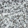 Natural Polished/Harmmer/Flamed China G439 White Granite Stone for Countertop/Paving/Wall/Floor