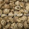 Высушенный гриб Shiitake белого цветка консигнанта еды