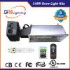숨겨지은 Hydroponic 315W CMH 디지털 밸러스트 온실은 가벼운 장비 시스템을 증가한다