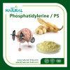 Het natuurlijke Uittreksel Phosphatidylerine van de Installatie/PS het Uittreksel van de Sojaboon
