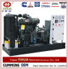 Ricardo Weifang Power Generating From 10kw aan 200kw