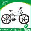 Bicicleta eléctrica de la bici de la montaña de 26 pulgadas con la rueda integrada de la aleación del magnesio