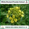 Extrait de poudre de graine de moutarde blanche avec des polyphénols 8%