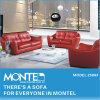Mobília, sofá, cadeira clássica luxuosa da sala de visitas