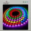 Striscia LED (SL-B1213RGB60) di approvazione del CE della striscia di RGB