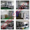 Verkoop het Vrouwelijke Hormoon USP Megestrol CAS van 99%: 3562-63-8 veilige Verzending