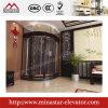 별장 엘리베이터|Homes를 위한 엘리베이터|320kg~400kg|작은 가정 상승