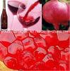 Premier vin, vin de grenade de raisin d'UE/Brut, 100%Juice brassant, anthocyanine riche, acides aminés, anticancéreux, anti-vieillissement, tonique de sang, prévention de vin ischémique et aphrodisiaque