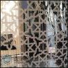 el espejo 201 304 grabó al agua fuerte la hoja de acero inoxidable de la decoración Titanium (producto final 04)