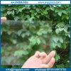 Оптовые плоские анти- отражательные листовые стекл Ar