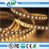 中国の工場価格3014のIP20多重カラー適用範囲が広いLED滑走路端燈(LM3014-WN120-Y)