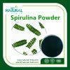 EiwitPoeder van de Supplementen Spirulina/Spirulina van 100% het Natuurlijke Voedings