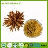 上の販売の中国の草のエキスの幼虫の菌類