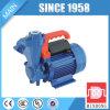 Selbstabsaugung-Wasser-Pumpe der Qualitäts-0.5HP mit Druckbehälter