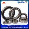 Chrom Steel Deep Groove Ball Bearing 6309-2rzn/450309