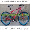 Tianjin 20  24  26 da  bicicletas MTB montanha Bicycles 21s