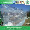 Аграрный парник Fim пластмассы для томата Plantring