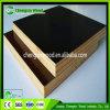 A película da boa qualidade enfrentou a madeira compensada/madeira compensada marinha/madeira compensada Shuttering a preço do competidor