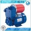 Auto-Priming Peripheral Pump do picosegundo para Irrigation com Compactness Reliablility