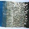 Ricamo del Sequin di modo per Garment-Flk308