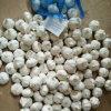 Un aglio bianco puro dei 2017 raccolti con la scatola o l'imballaggio del sacchetto