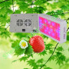 Hifgh Power 100 * 3W Flat LED Garden Light para Legumes