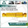 Stoßdämpfer 38683100 für Renault-LKW-Stoßdämpfer
