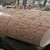 Старая поставка кирпича PPGI Китая стены