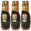 第1インドのバージンのRemyの人間の毛髪のWeft自然な毛(GP-ISW16 )