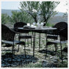 Tempered/Toughened Glass neri per Outdoor Table/Tea Table/Coffee Table