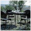Aangemaakt zwart/Gehard glas voor OpenluchtTable/Tea Table/Coffee- Lijst
