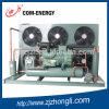 Unidad de condensación con el compresor de Bitzer para la cámara fría