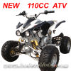 110CC ATV/Quad MC-314