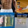 Supplemento Bodybuilding Boldenone Undecylenate degli steroidi di legit/Equipoise