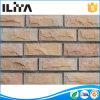 Piedra artificial para el revestimiento de la pared, ladrillo de la pared (YLD-13009)