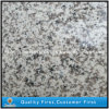 China G655 Real White Granito Losas para suelos, encimeras