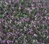 Folhas ao ar livre da decoração da parede da paisagem artificial (MZ188003G)