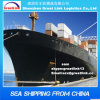Aggio Cheap FCL/LCL, Iinternational Shipping Sea Shipping a Casablanca Marrocos