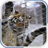 ステンレス鋼の動物園の網