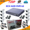 sistema livre do CCTV do software do Cms de 8channel 720p Ahd