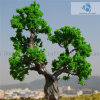 (완료되는) Landscape를 위한 Scaled Wire Ancient Tree의 (a) 모형 Tree